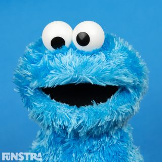 Cookie Monster Stuffed Toy