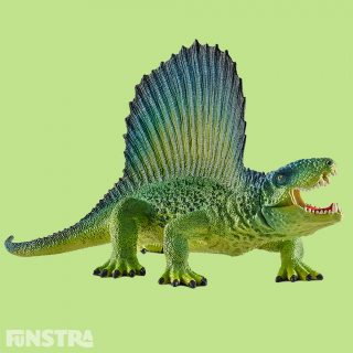 The Dimetrodon is often referred to as a dinosaur. However, it is a primeval reptile, a so-called Pelycosaurus. The sail on its back was made of skin and bones, helping it to warm itself quicker in the sun. If it wanted to cool down, it positioned the sail parallel to the sun's rays.