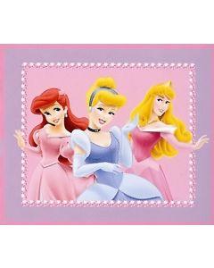 Disney Princess Pretty Blanket